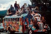 Hippie Experience