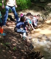 Ivy Creek Fun!