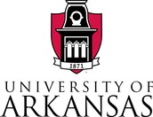 #3 University of Arkansas