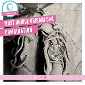 What Is Origami Owl?