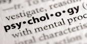 2.) School Psychologist