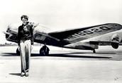 Amelia's Final Flight
