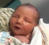 Baby Jonah - Daddy B. Lorek