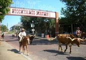 Located in the Historic Stockyards