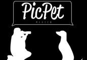 PicPet México