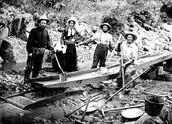California gold rush workers