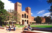 UCLA is home to one of the best library systems in the country!