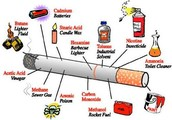 Poisons in a Cigarette
