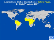 Where in the world is Yellow Fever found?