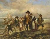 How Pilgrims lived