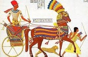 The Ancient Egyptian Military