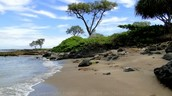 http://www.onlyinhawaii.org/oneuli-beach-maui-hawaii/