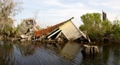 The great disaster of hurricane katrina