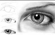 el gusta dibujar
