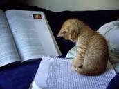 Study regularly!!