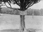 Naming of 'stonewall' Jackson