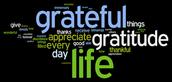 Reflection Corner: Gratitude for the Little Moments