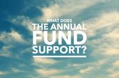 Annual Fund 2015-16