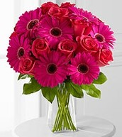Pink Rose Arrangement with Daisys