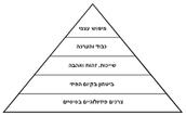 פרמידת הגזעים על פי תורת הגזע