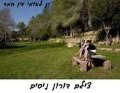 תמונות מהמקום