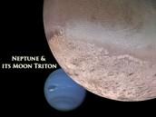 Triton Neptune's  largest moon