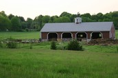 Pilot Grove Farm