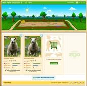 Animal Enclosure Page