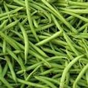 Ripe Green Bean