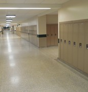 The Newly Opened Halls