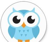 """Mascot...""""Lets go Blue Owls"""""""