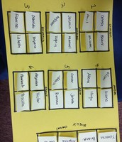 Yellow Group Seating Chart
