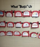 """What """"Bugs"""" Us"""