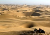 Important information about the desert