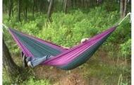 siesta in the jungle