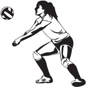 Why should you try out for volleyball?