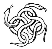 Intertwind Snakes
