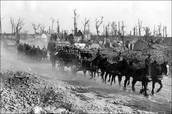 Horses hauling trailers full of soldiers