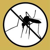 comoprevenir el mosquito aedes aegypti