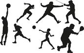 Sport Principles