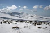 Clima en Faraya (ciudad en Líbano)