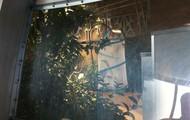 Butterfly Pavilion!