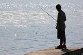 Me gusta pescar.
