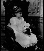Helen & Her Dogs