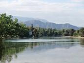 Lago Del Parque