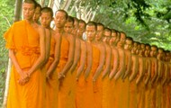 Thai buddhism and monks