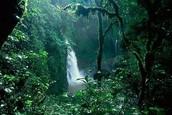 Lost Waterfall