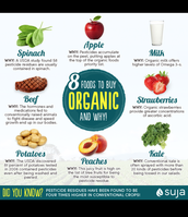Organic foods to buy