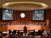 Who serevs on Covington City Council