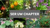 SER-UW Internship Applications Due-December 11th